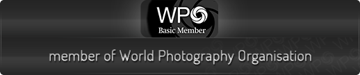 WPO - członek World Photography Organisation